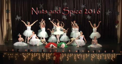 Nuts and Spice 2016 Group